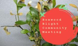 Sep 27th: Boxwood Blight Community Meeting