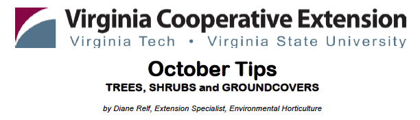 October Tips: TREES, SHRUBS and GROUNDCOVERS